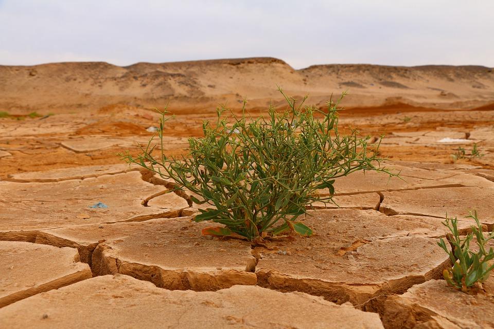 Sicurezza e clima. Perché la stabilità climatica è una delle priorità nel Mediterraneo