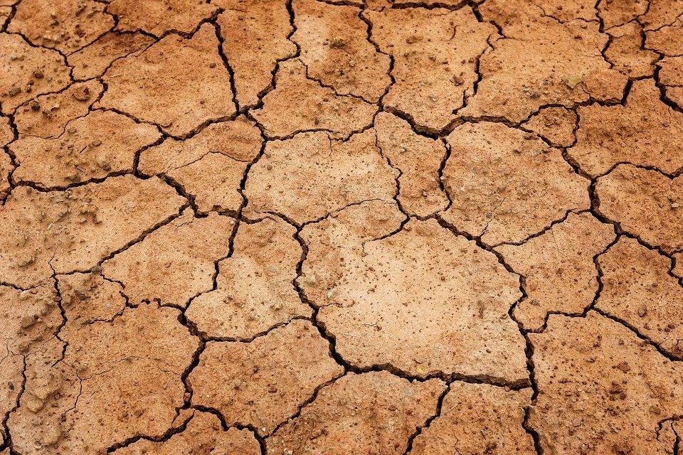 I cambiamenti climatici nel Sahel e le conseguenze su economia, società e sicurezza