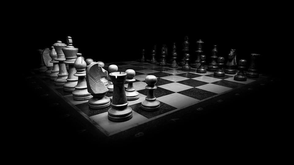 La zanzare e il leone; strategia e tattica della jihad.
