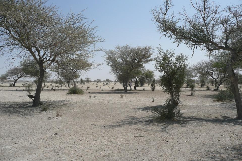 Crisi climatica e conflitti in Africa